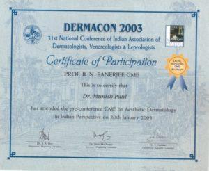 2003-8